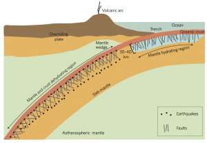 Subducting Plate Faults